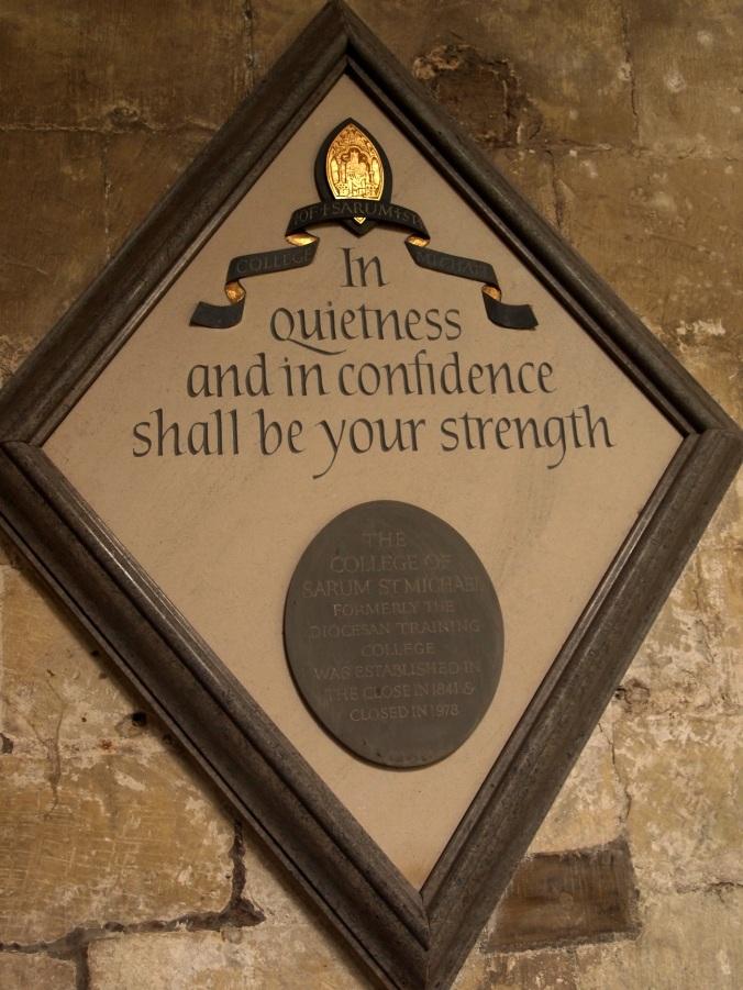 Salisbury plaque