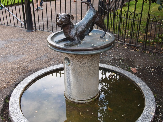 dog fountain