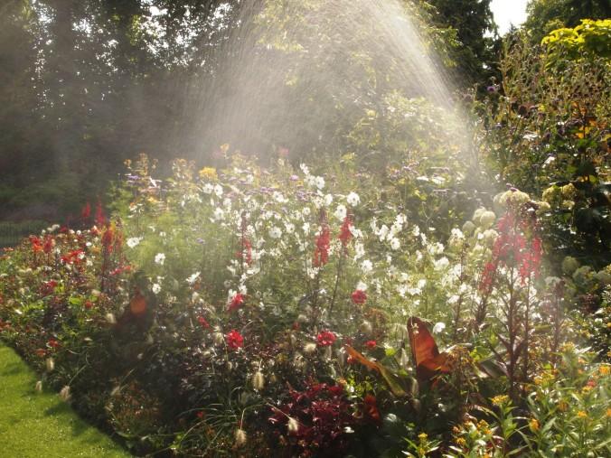 sprinkler watering Kensington Garden